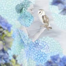 Hydrangea Cradled Owl  © Emma Hack